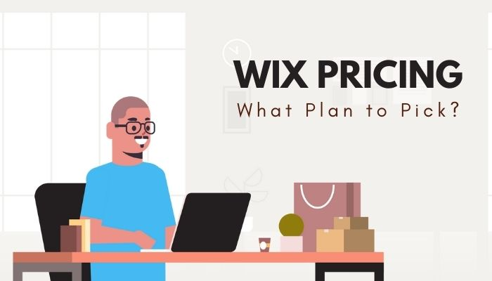 Wix Pricing 2021: What Plan to Pick and What to Avoid?