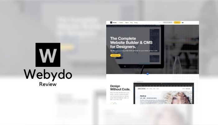 Webydo Review 2021: Details, Pricing, & Features