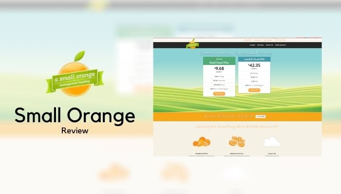 A Small Orange Web Hosting Review 2021