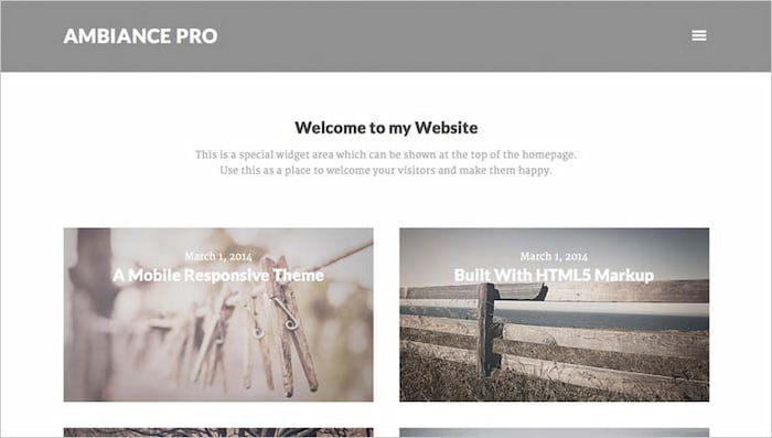 Ambience pro photography website example