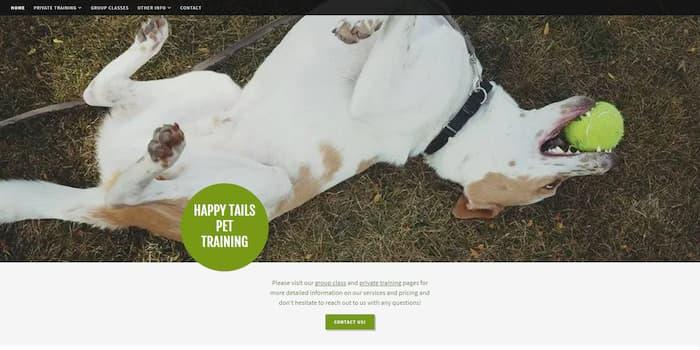 GoDaddy Example Websites