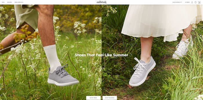 Shopify Websites Examples 1